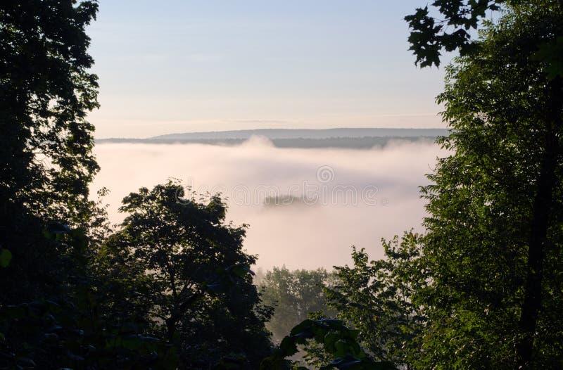 Плотный туман утра под восходом солнца солнечного света реки стоковые фотографии rf