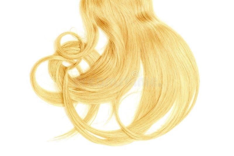 Плохая концепция дня волос Длинный, белокурый, disheveled ponytail стоковое фото