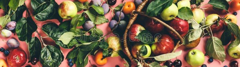 Площадь свежих фруктов и ягод на розовом фоне стоковое изображение rf