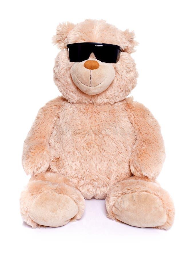 Плюшевый медвежонок с солнечными очками стоковые фотографии rf