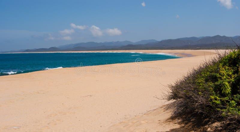 пляж бесконечный стоковые фотографии rf