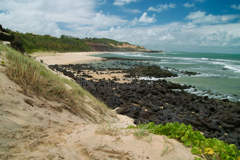 пляж Бразилия делает praia pipa сценарный стоковая фотография rf