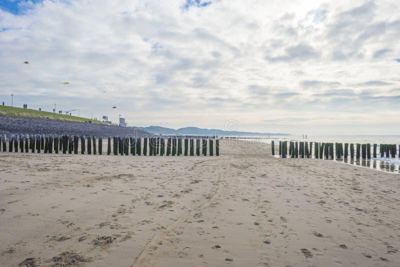Пляж вдоль моря в солнечном свете на падении стоковые фотографии rf
