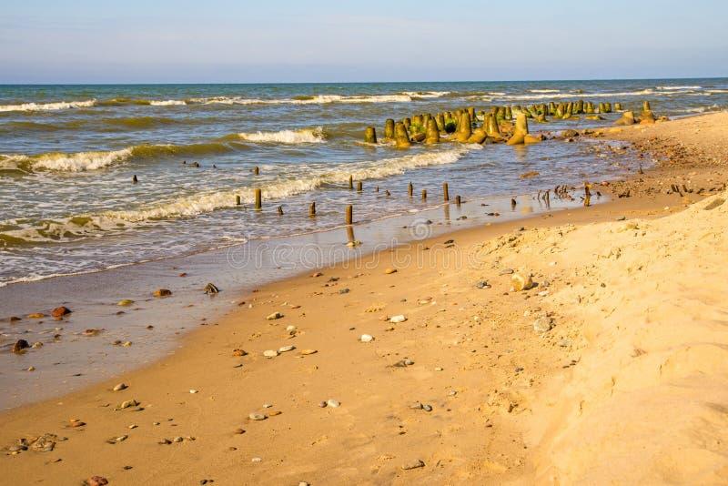 Пляж волн-выключателя Балтийского моря стоковые фотографии rf