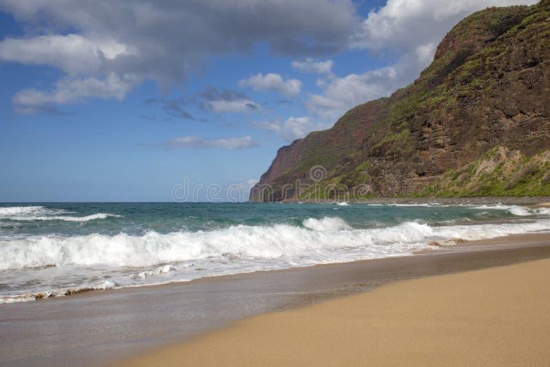 Пляж Гаваи стоковое изображение rf