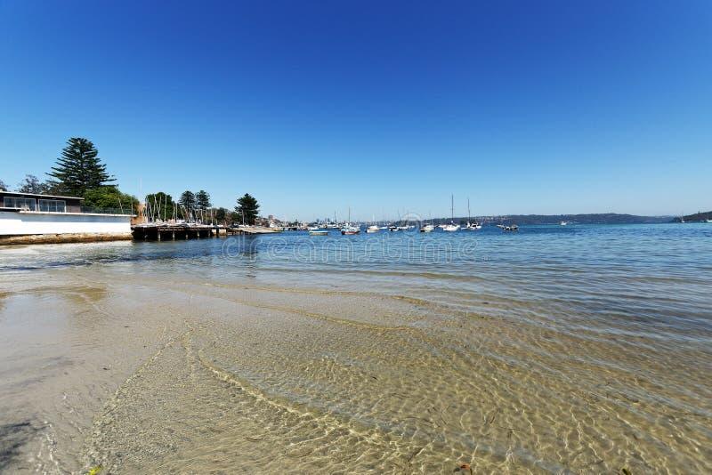 Пляж гавани Sandy Сиднея, розовый залив, Австралия стоковые фото