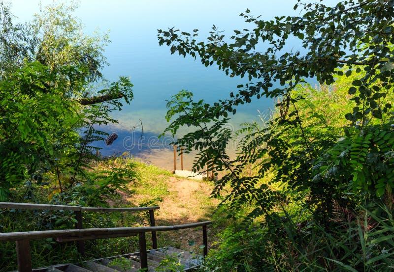 Пляж затишья озера лет с древесиной вымачивает к воде стоковое фото rf