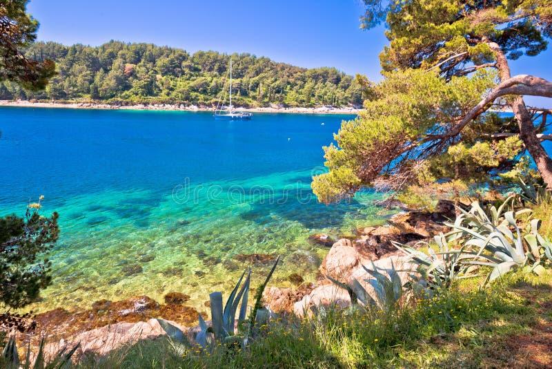 Пляж идилличной бирюзы каменный в Cavtat стоковое изображение
