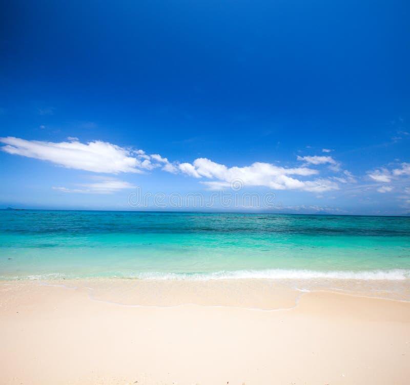 Пляж и красивое тропическое море стоковые изображения rf