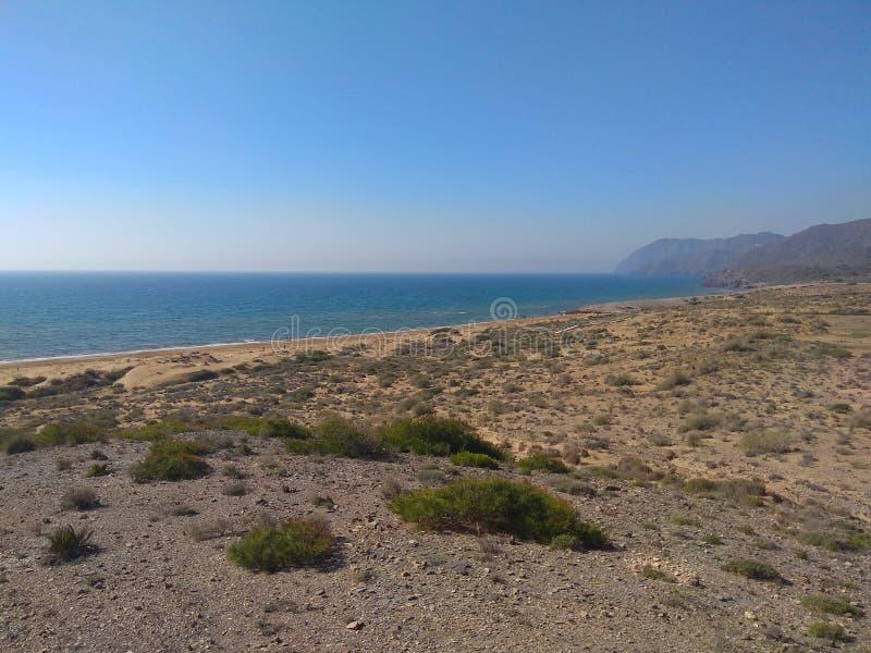 Пляж и небо стоковые фото