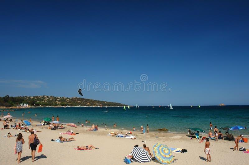 пляж Корсика стоковые фото