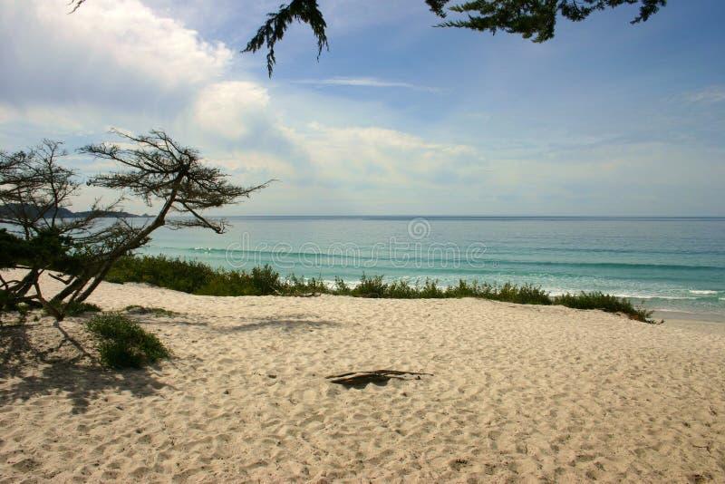 пляж красивейший california стоковые изображения rf