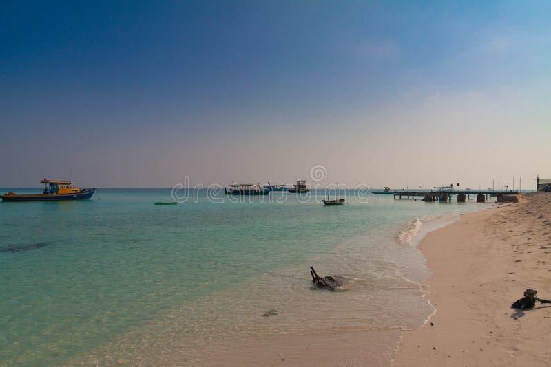 Пляж Мальдивов стоковые фото