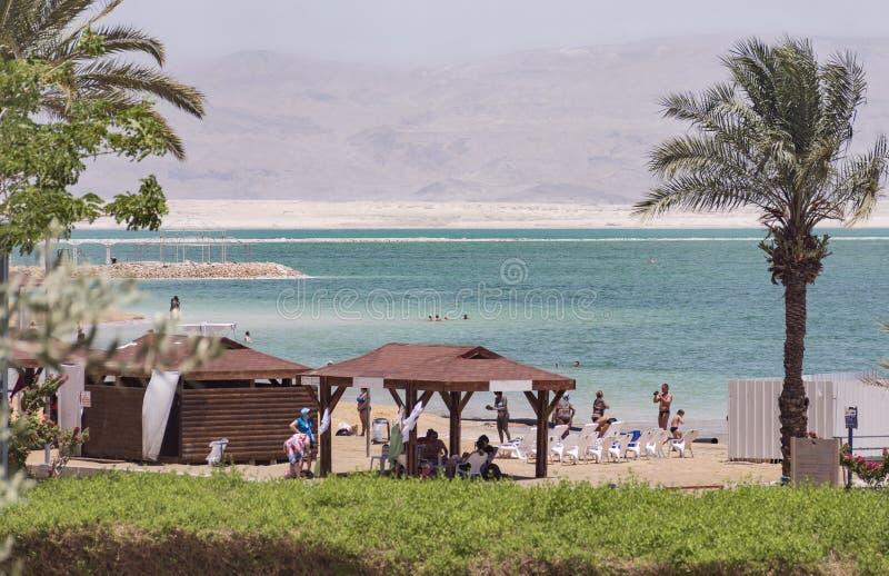 Пляж мертвого моря на курорте Ein Bokek стоковая фотография rf