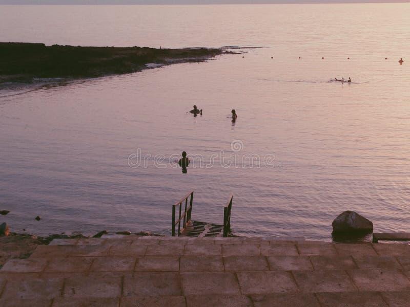 Пляж мертвого моря Kempinski стоковые фото