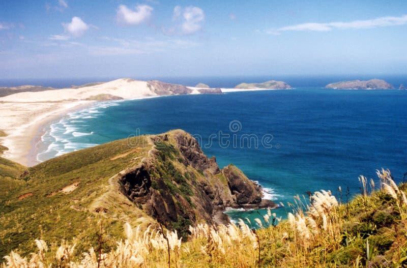 пляж Новая Зеландия стоковая фотография rf