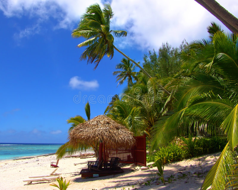 Download пляж ослабляя стоковое фото. изображение насчитывающей заводы - 91328