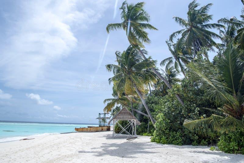 Пляж острова Мальдивов стоковое изображение rf