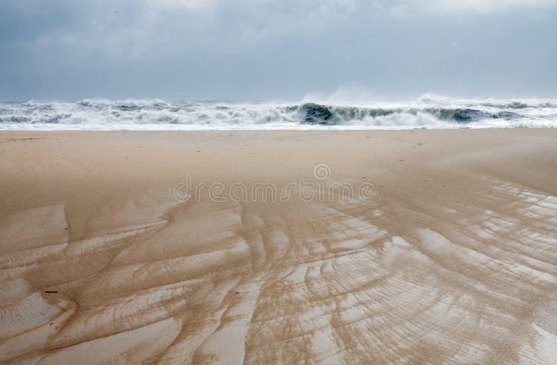 Пляж охраняемой природной территории Assateague национальный стоковая фотография rf