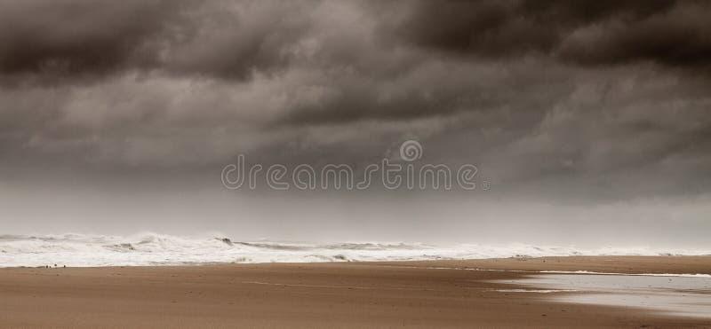 Пляж охраняемой природной территории Assateague национальный стоковое фото