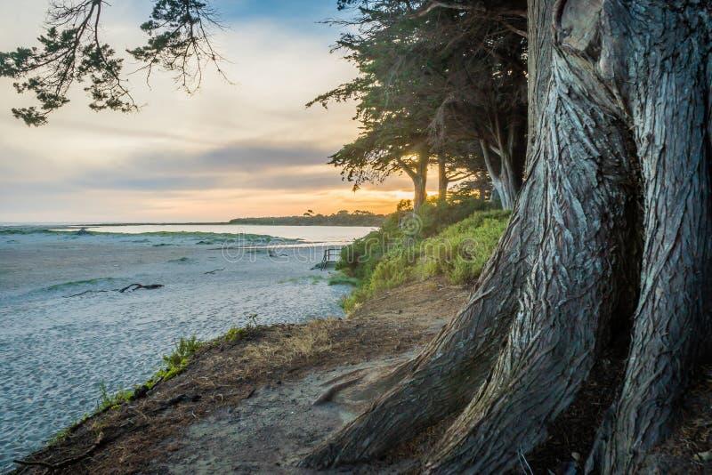 Пляж прибоя Inverloch на заходе солнца в Виктории, Австралии стоковые фотографии rf