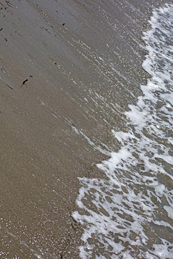 Пляж развевает предпосылка высококачественные 50,6 Megapixels конспекта макроса стоковое изображение