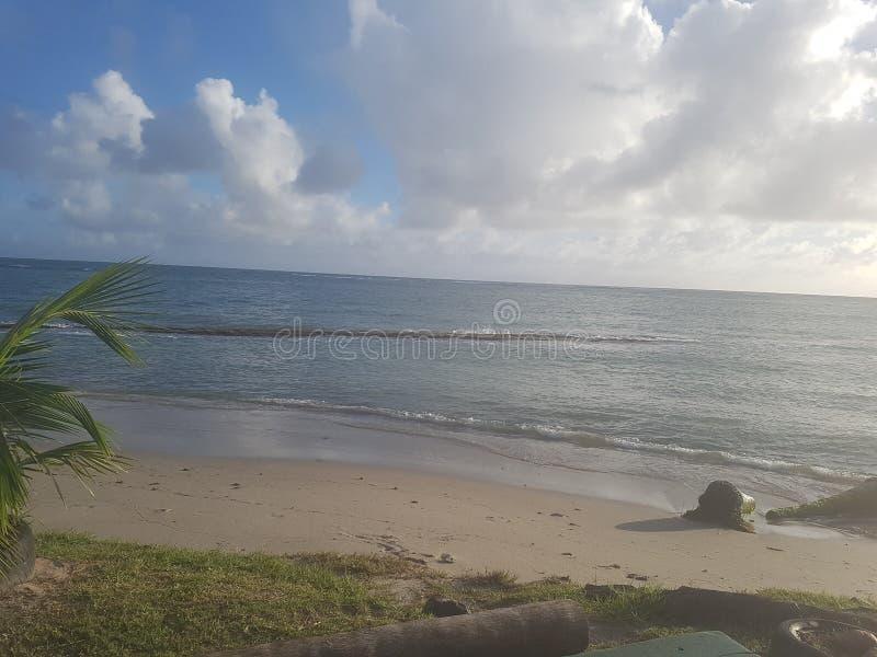 Пляж сахара стоковые фото