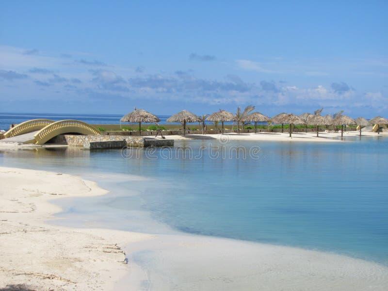 Пляж с зонтиками ладони в Roatan Гондурасе стоковые фотографии rf