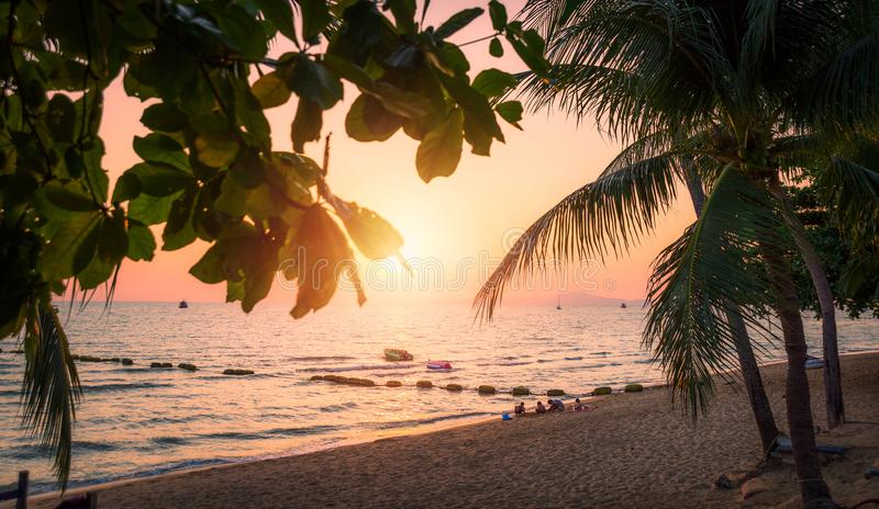 Пляж с пальмами на заходе солнца Пляж Jomtien в Таиланде стоковое фото