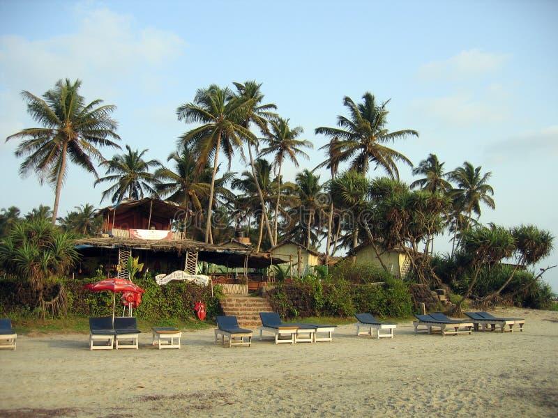 Пляж с песком и loungers под пальмами стоковое фото rf