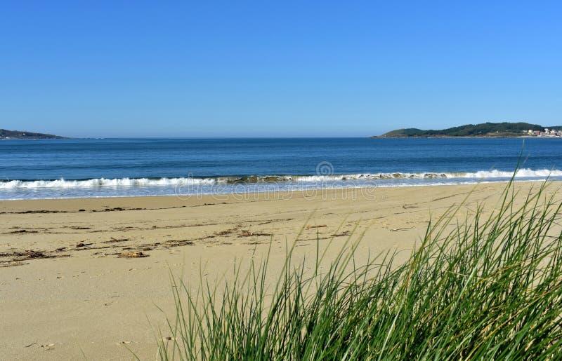 Пляж с растительностью в песчанных дюнах и небольшом ломать волн Голубое море с пеной, солнечным днем Галиция, Испания стоковое изображение rf