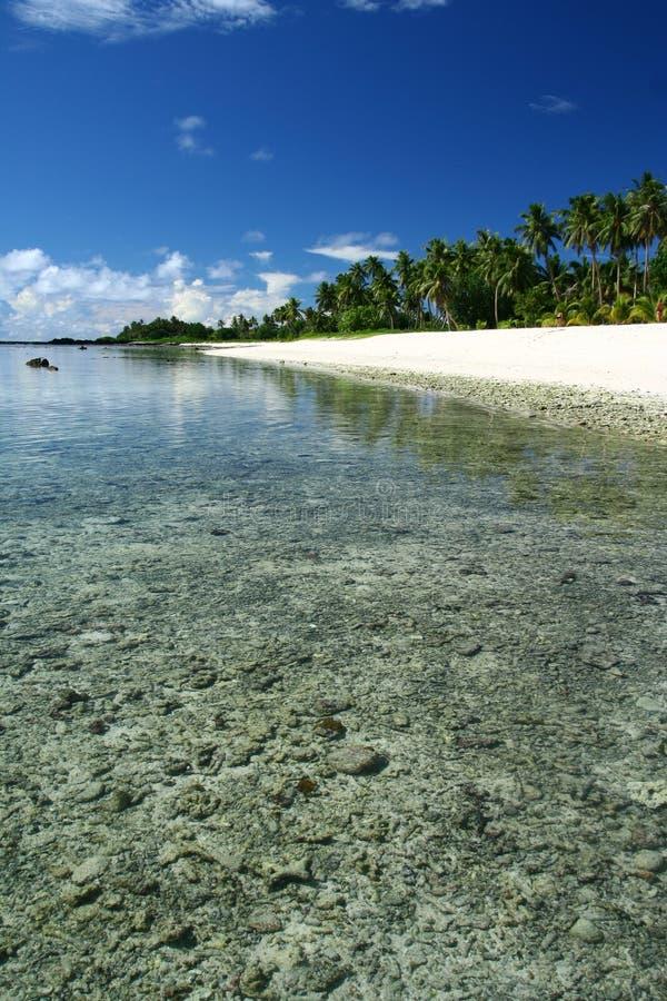 пляж Тихий океан Самоа алебастра южный стоковые изображения rf