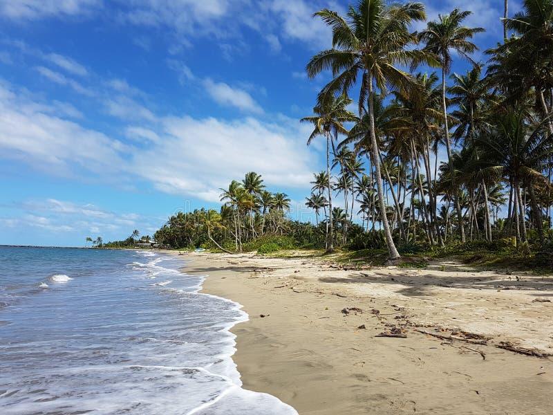 Пляж Фиджи стоковое изображение