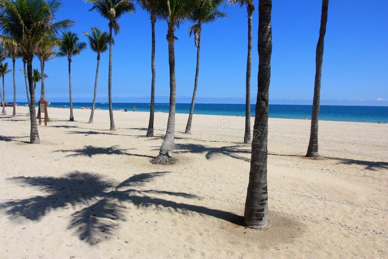 пляж Форт Лаудердале стоковые фото