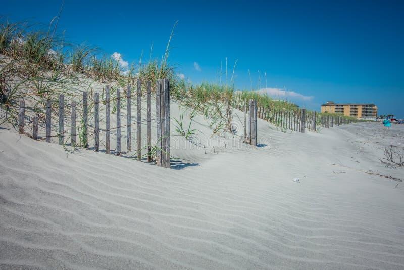 Пляж Чарлстон Южная Каролина сумасбродства на Атлантическом океане стоковое изображение