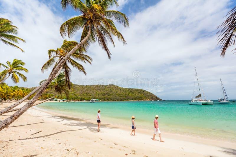 пляж ягнится мать стоковые фото
