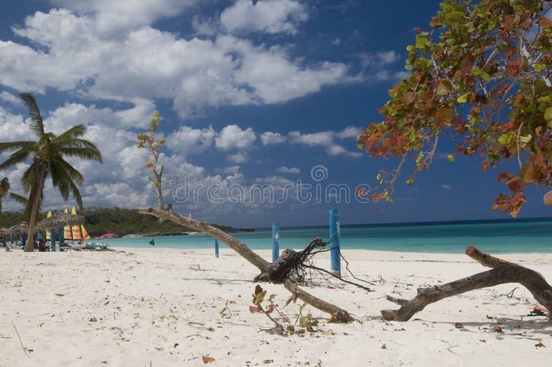 Download пляж стоковое изображение. изображение насчитывающей лето - 6851735
