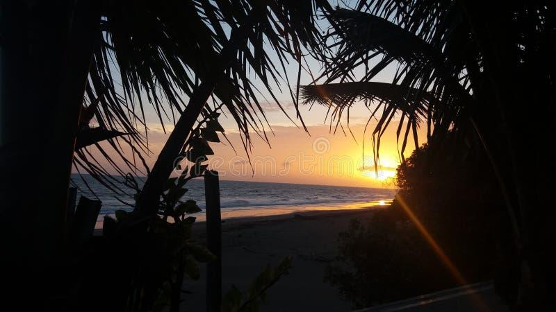 Пляж El Estero стоковое изображение