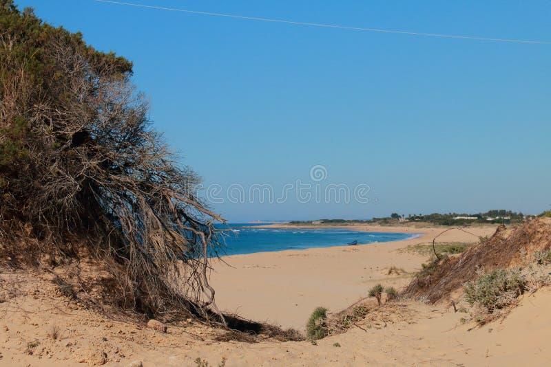 Пляж El Palmar, на побережьях провинции Кадиса, Испания стоковые изображения
