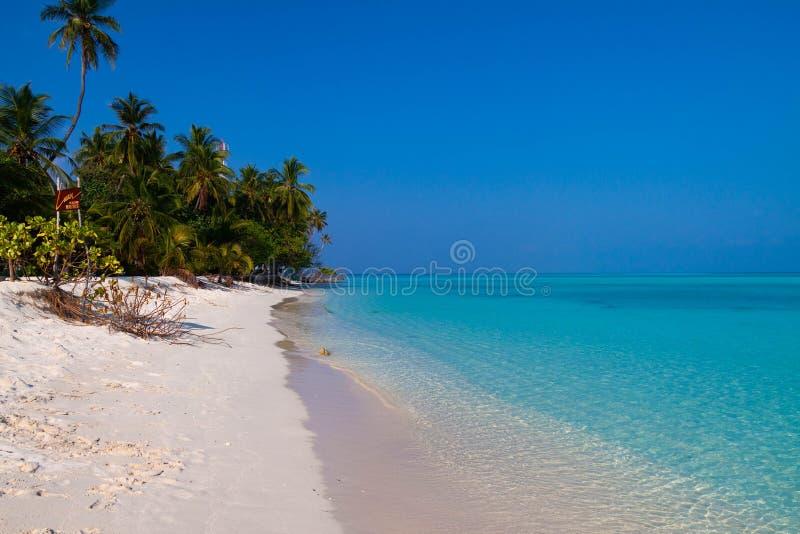 Пляж Fulidhoo стоковые фото