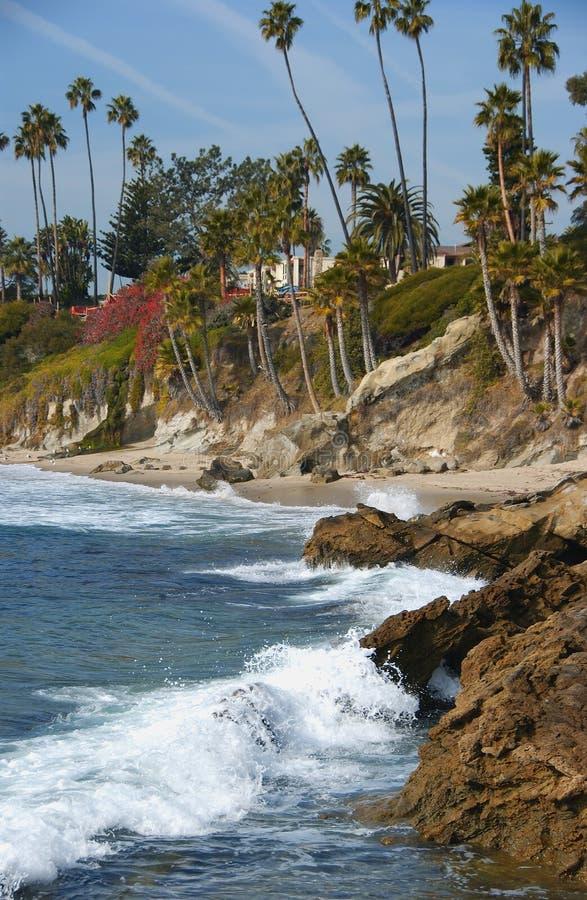 пляж laguna стоковое изображение rf