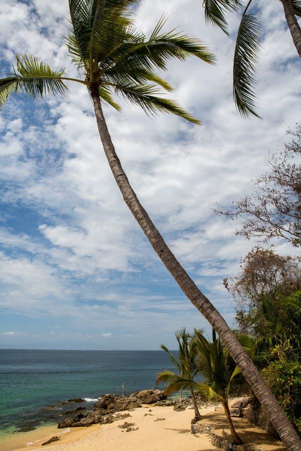 Пляж Las Caletas приключений Vallarta стоковое фото