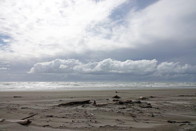 Пляж Ohope в Whakatane, Новой Зеландии стоковое фото