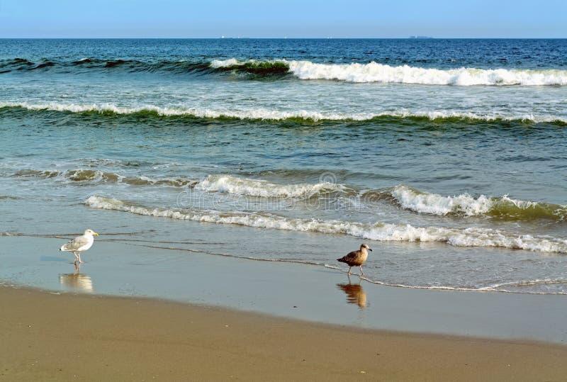Пляж Rockaway, Нью-Йорк, США стоковое изображение