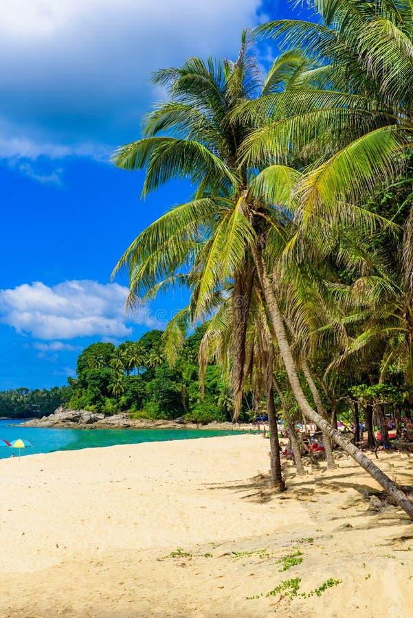 Пляж Surin, пляж рая с золотым песком, кристаллическая вода и пальмы, зона на острове Пхукета, тропическое перемещение Patong стоковые фотографии rf