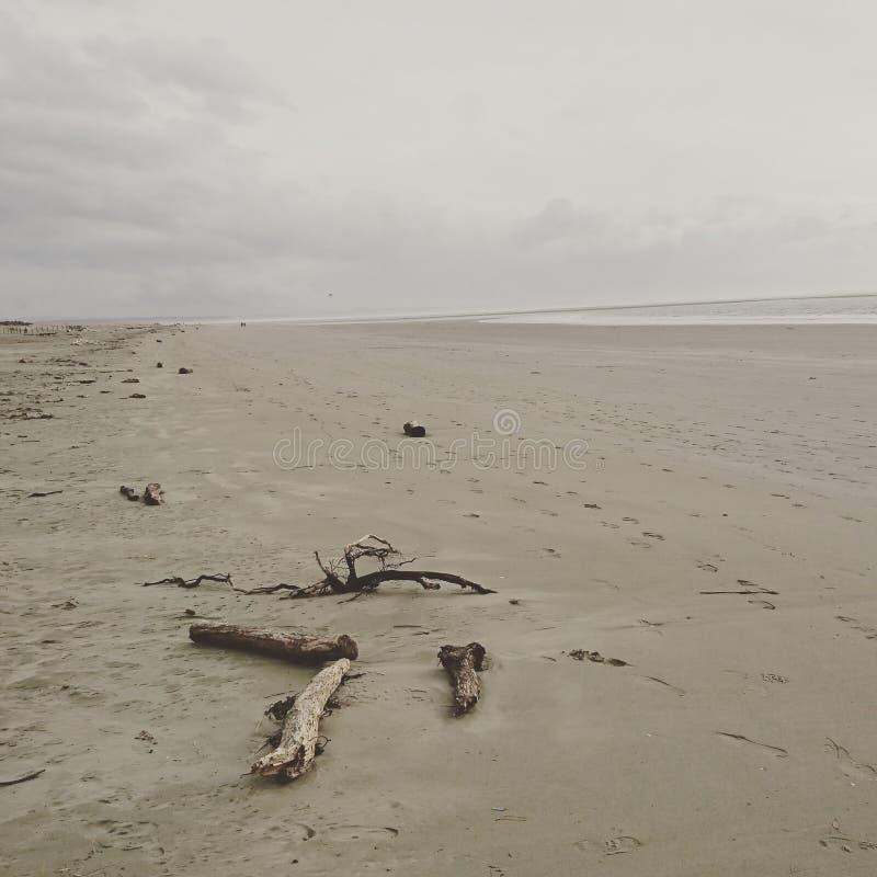 пляж tahuna в зиме очень холодной стоковая фотография rf