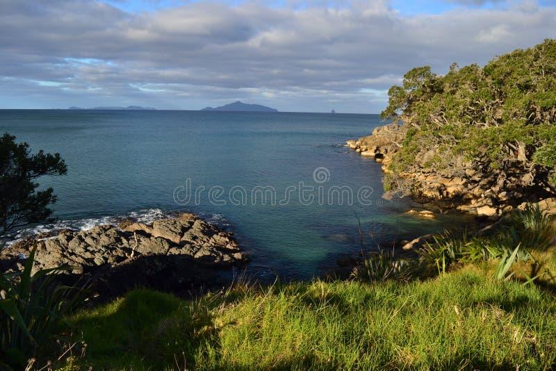 Пляж Waipu, бухта, Northland, Новая Зеландия стоковые фото