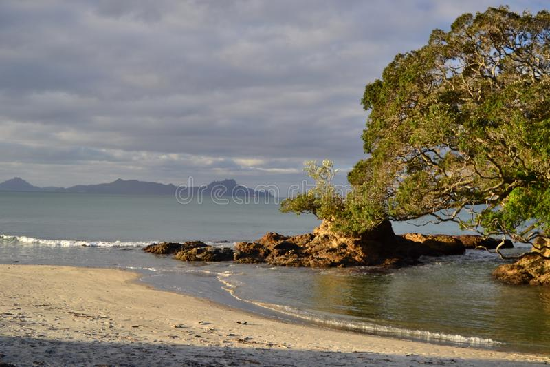 Пляж Waipu, бухта, Northland, Новая Зеландия стоковые изображения rf
