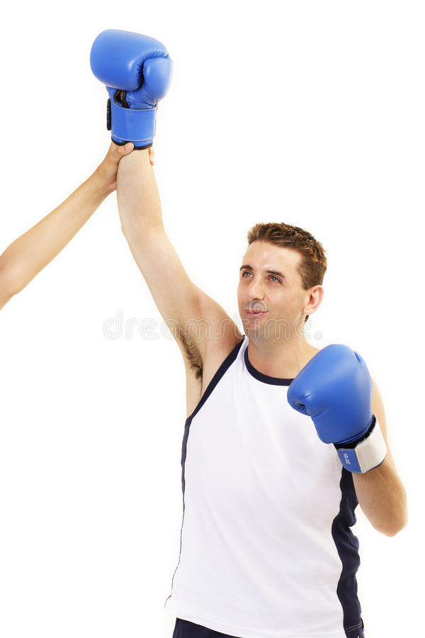 победитель боксера стоковые изображения rf