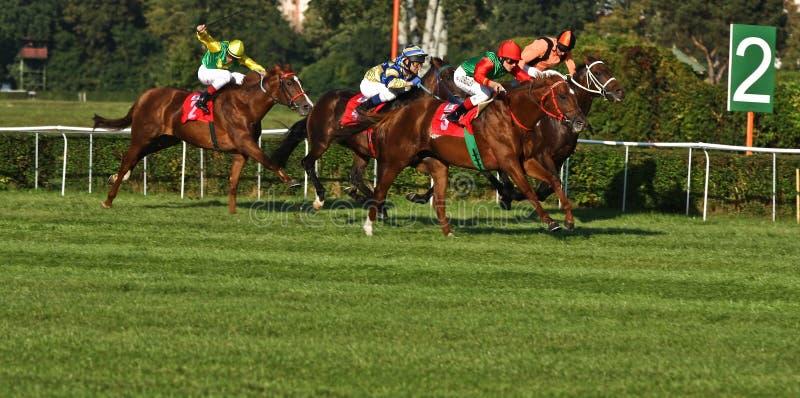 победитель warsaw turgaev anton большой стоковые фото